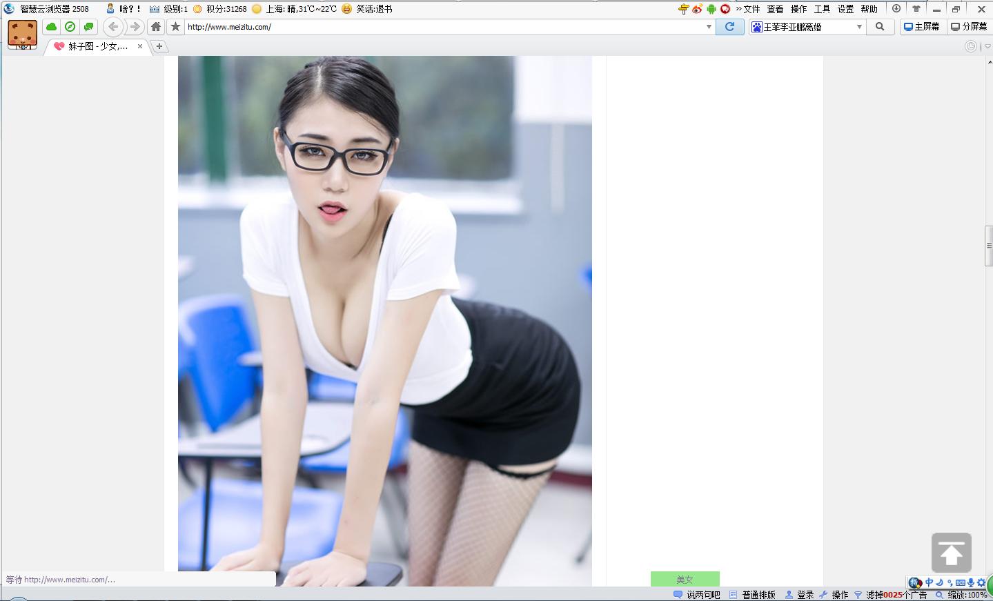 Wise浏览器
