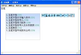 王码五笔字型2011普及版
