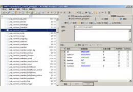 MySQL管理器(HeidiSQL) 绿色中文版
